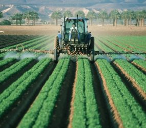 Pesticides, il faut agir !