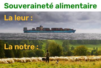 «Souveraineté alimentaire» : un terme malhonnêtement détourné par les promoteurs de l'agriculture intensive